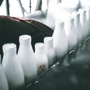 eco friendly milk alternatives